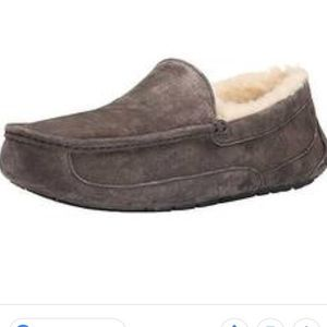 Ugg Ascot Slippers in Charcoal